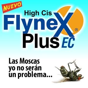Flynex Plus EC, Próximo Lanzamiento